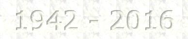 194216
