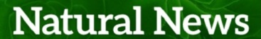 naturalnews500